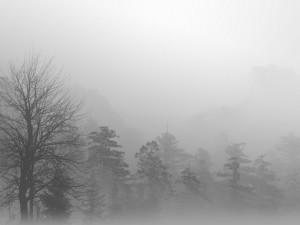 Navigera i dimma